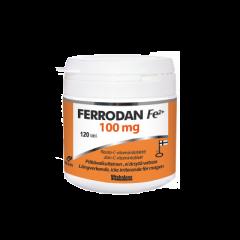 Ferrodan Fe2+ 100 mg 120 tabl
